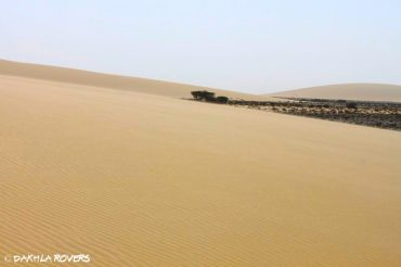 Al Baraka specials – discover Dakhla at a slow pace