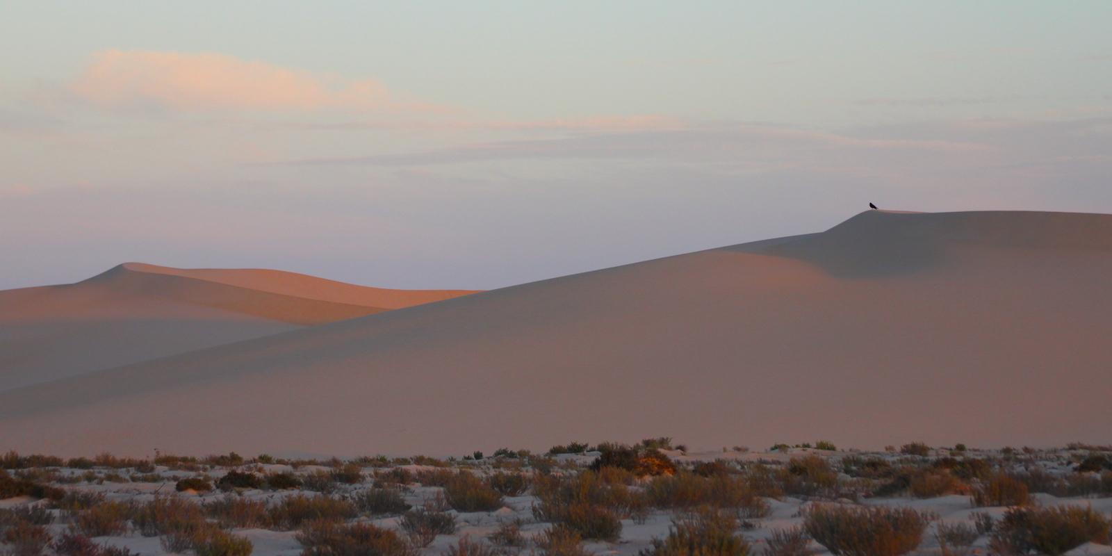 Dakhla Rovers Sahara dunes